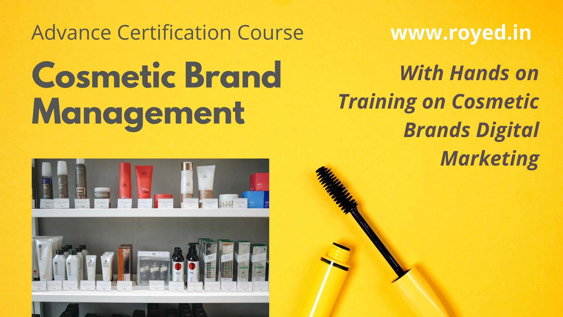 Cosmetic Brand Management Course